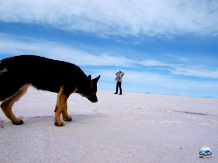 Deserto Salar de Uyuni, Bolívia
