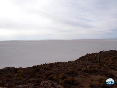 Isla Inacahuasi, Salar de Uyuni, Bolívia