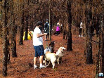 Gang do Zeca RG Local Bosque das Fadas